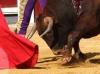 corridaprimavera14