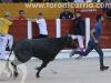 encierro-guada15-17