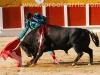 toros-guada06