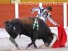 toros-guada17