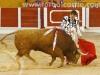 toros-guada32