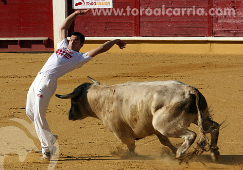 Ávila, concurso de recortes | 01-05-2011