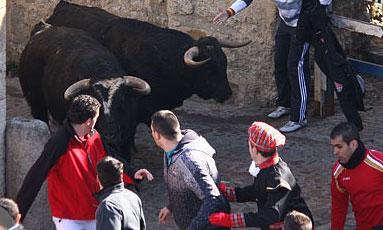 Ciudad Rodrigo, encierro   07-03-2011