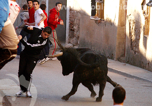 Iriepal, encierro por las calles | 05-02-11