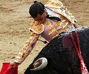 Toros de Celestino Cuadri | Las Ventas 02-06-11