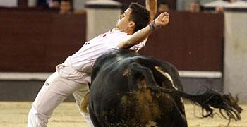 Las Ventas, concurso de recortes | 23-07-11