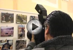 Vídeo del 5º concurso de fotografía taurina ToroAlcarria