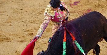 Cuenca, corrida de toros | 20-08-11