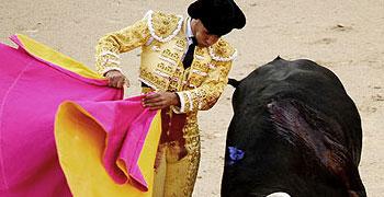 Toros de Jandilla | Las Ventas 01-04-12