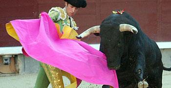 Novillos de Buenavista, Las Ventas 14-05-12