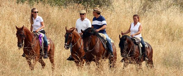 Los caballos y el encierro de Brihuega 2013