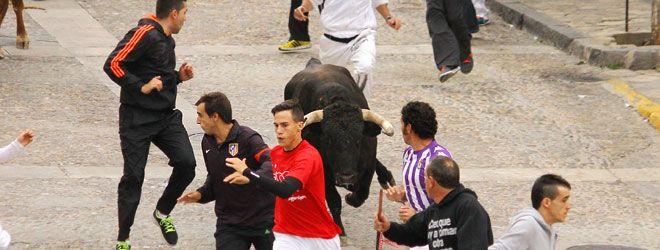 Brihuega, encierro por las calles | 19-10-13
