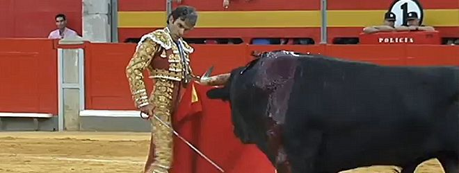 José Tomás en Granada 2014