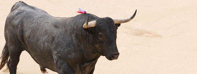 Corrida de toros en Las Ventas | 06-06-14