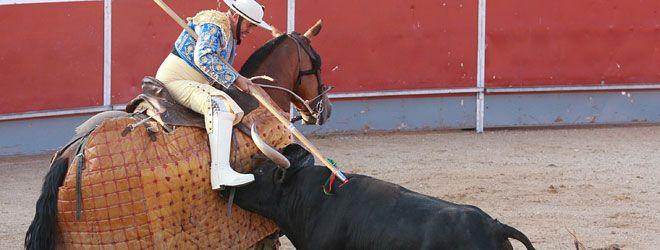 Novillada concurso en Cabanillas del Campo, 26-07-14