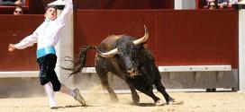 Detalles del concurso de recortes Las Ventas 2016