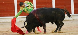 Corrida de toros en Guadalajara | 16-09-16