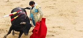 Toros de Montalvo en Las Ventas | 15-05-17