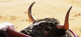 El toro de Madrid