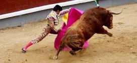 Toros del Pilar en Las Ventas | 13-05-17