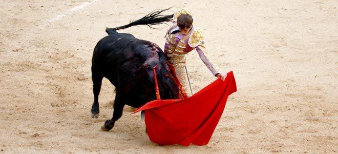 Novillada de Las Ventas