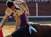 corridaprimavera15