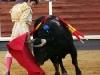 corridaprimavera58