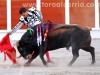 toros-guada14