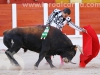 toros-guada15