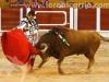 toros-guada31
