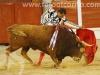 toros-guada33