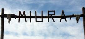 Ganadería de Miura