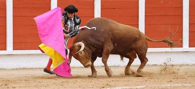 Toros en Guadalajara 2019