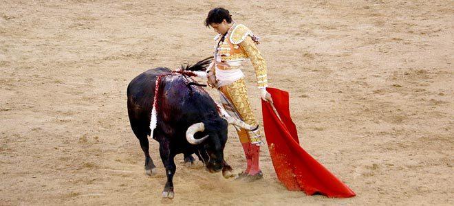 Torero Roca Rey