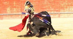 toros en Trillo 2019